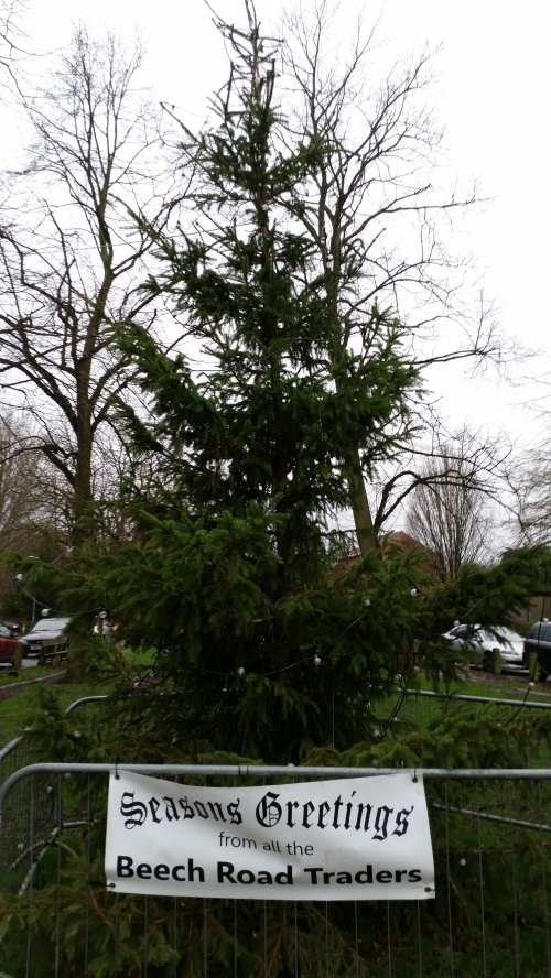 Christmas tree on Chorlton Green